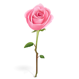 Pink Rose With Stem Icon, PNG ClipArt Image | IconBug.com  Pink Rose With ...