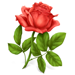 Red Rose Icon Png Clipart Image Iconbug Com