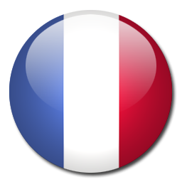 Image result for france flag